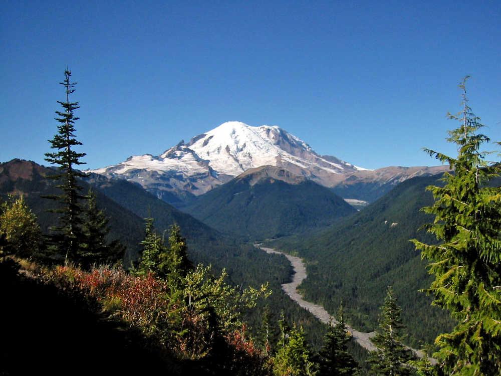 Mount Rainier Car Tour