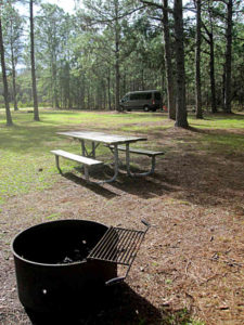 lower hillsborough wildlife preserve firepit